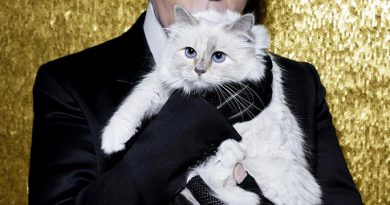 Late Iconic fashion designer Karl Lagerfeld willed some of his '$200m fortune' to his cat